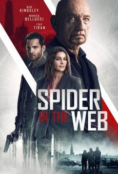 Паук в паутине (2019)