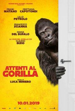 Осторожно, злая горилла! (2019)