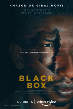 Чёрный ящик (2020)