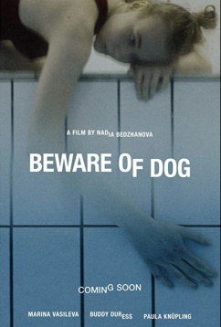 Остерегайся псов (2020)
